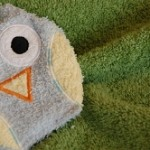 Owl Wash Cloth